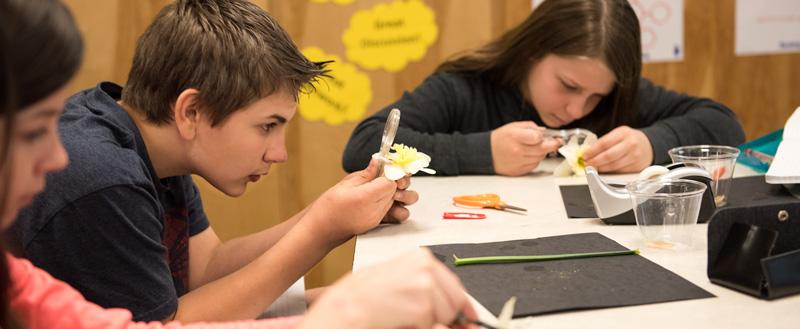 Jackson County School District - Curriculum & Instruction